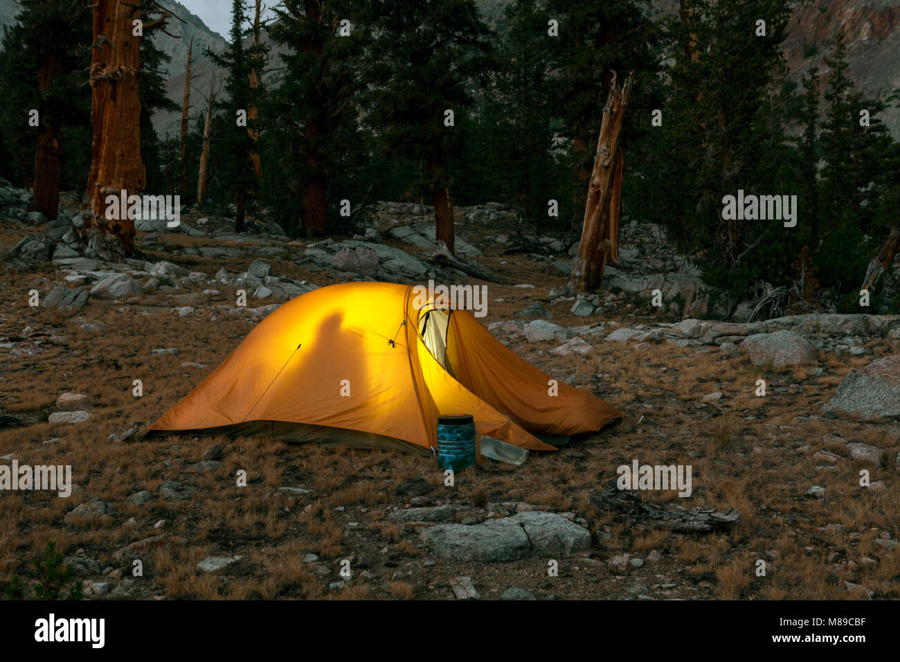 CALIFORNIA - C&site with bear proof container outside tent near & Bear At Tent Stock Photos u0026 Bear At Tent Stock Images - Alamy