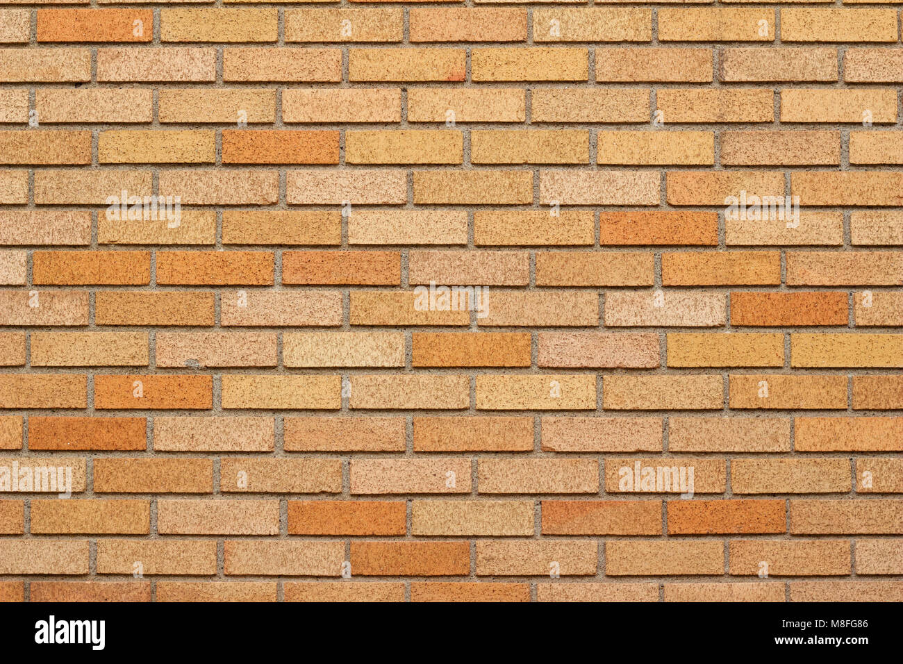 brick wall background featuring bricks in varying shades of gold and