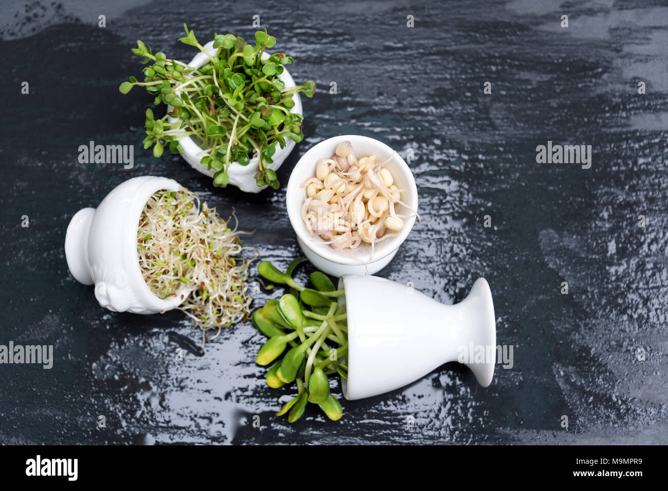 Different Types Of Micro Greens In White Bowls For Sauces On Wet