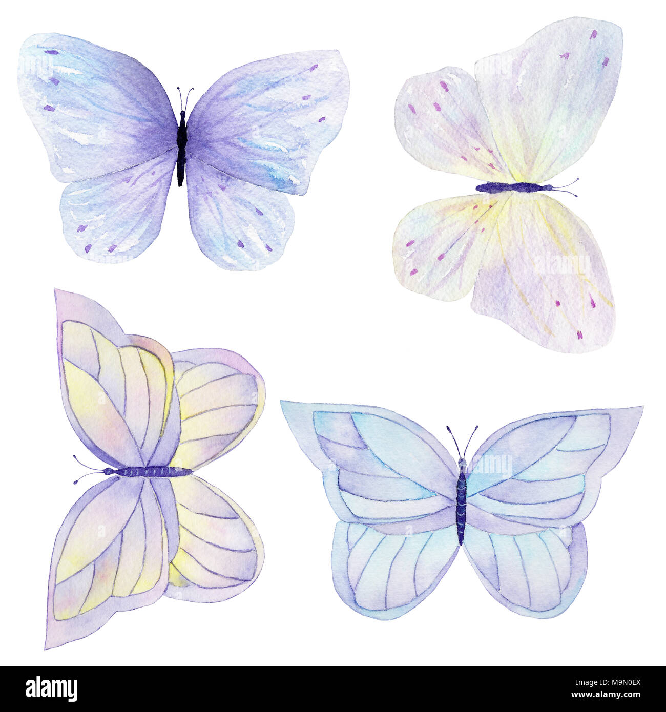 Watercolor Butterfly Set Hand Drawn Painting Can Be Used For