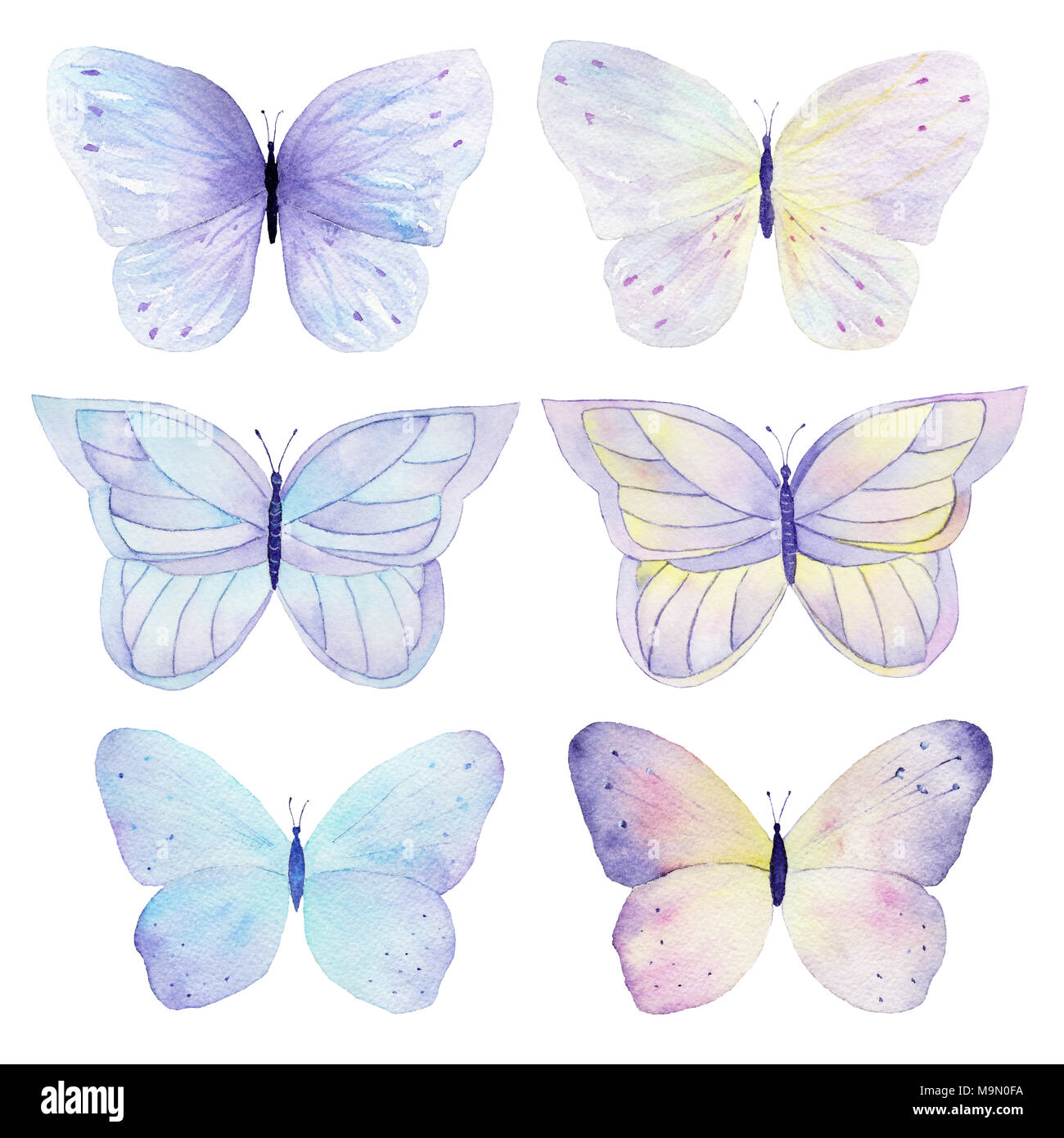 butterfly hand painted watercolor collection on white background