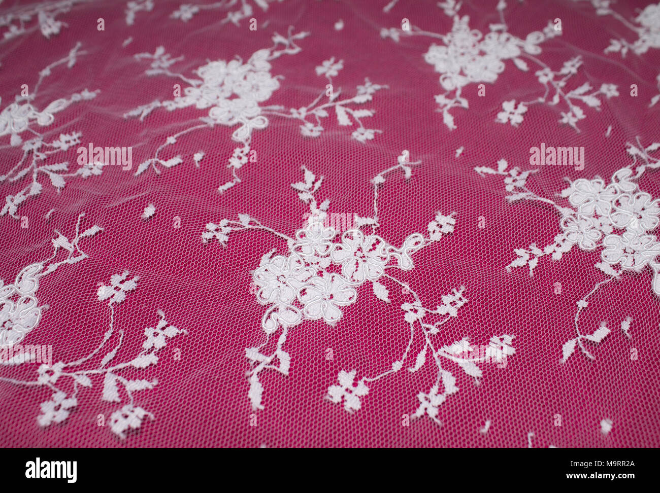 Beautiful White Lace Flowers On A Pink Background Stock Photo