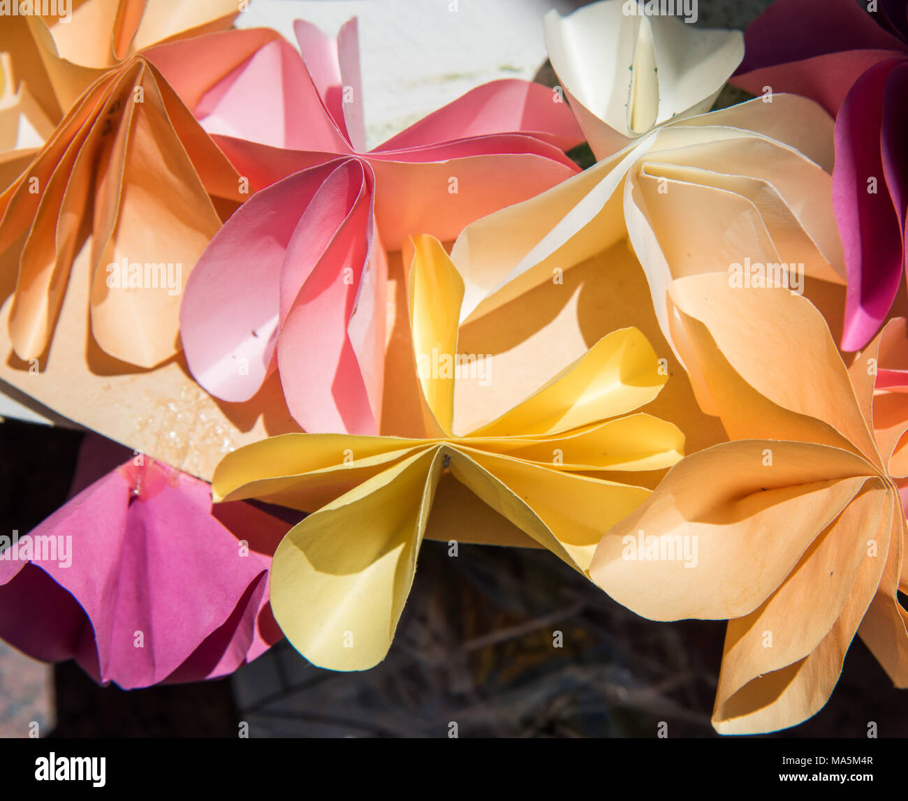 Closeup Of Origami Pastel Coloured Folded Paper Flowers Stock Photo
