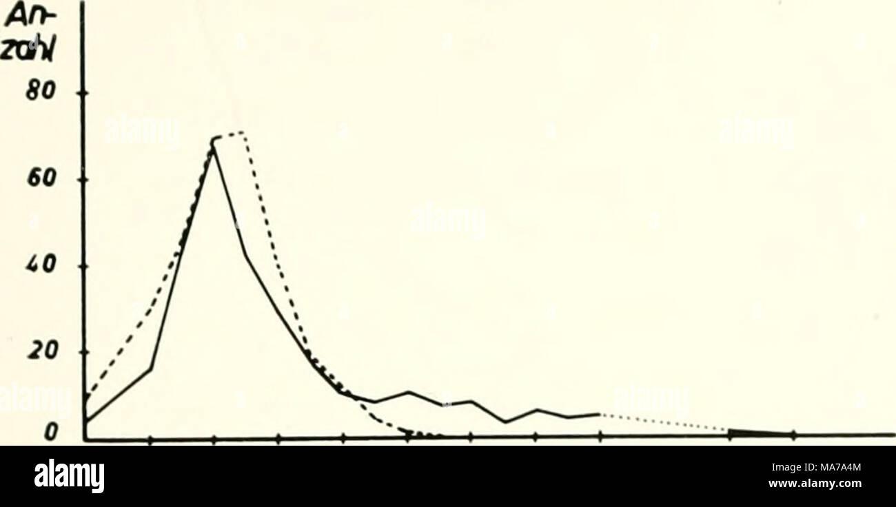 Ungewöhnlich Sketchkin Vorlage Bilder - Beispiel Anschreiben für ...