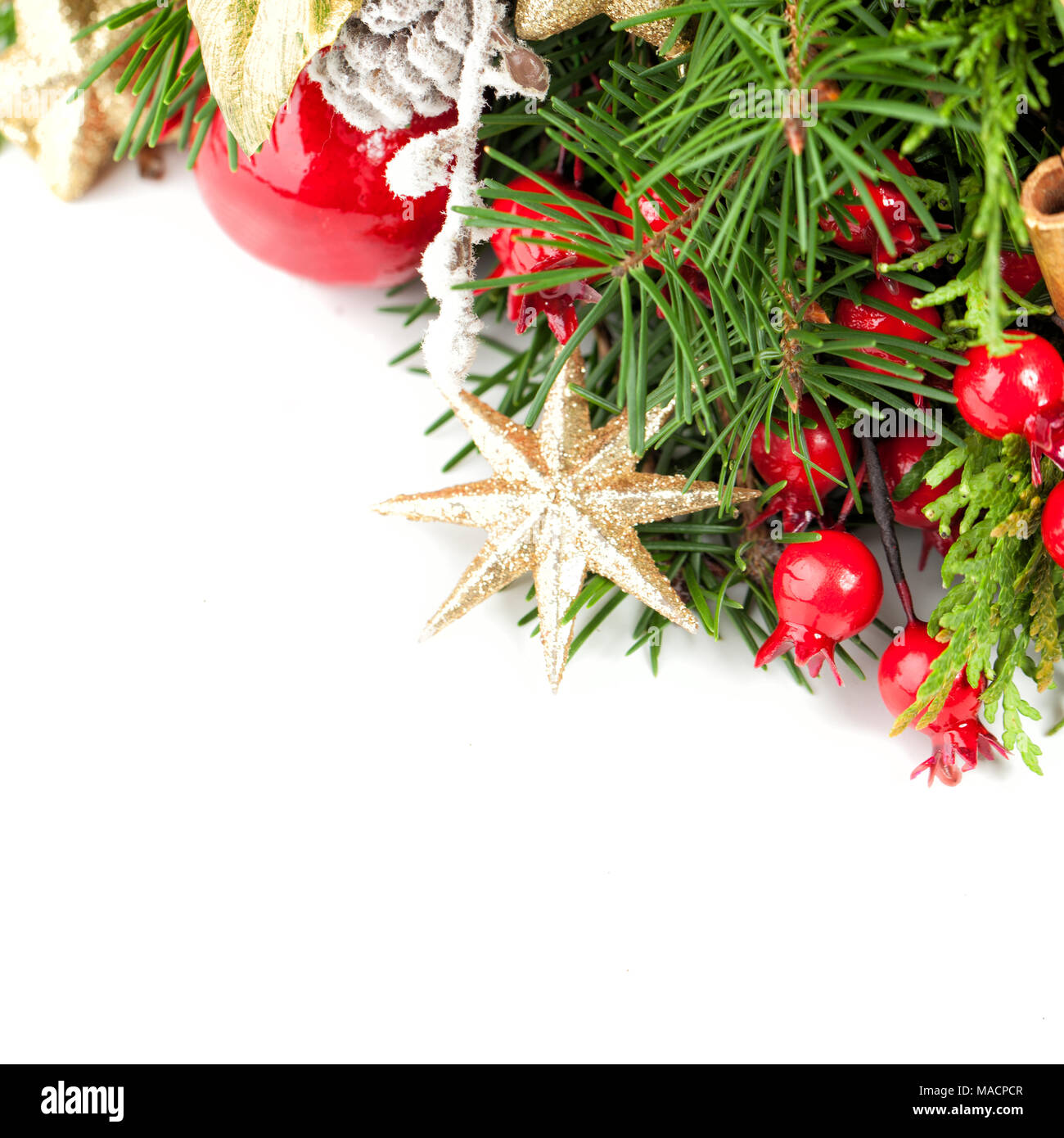 christmas decoration xmas tree twig golden star christmas balls and red berries on white background - Red Berry Christmas Tree Decorations