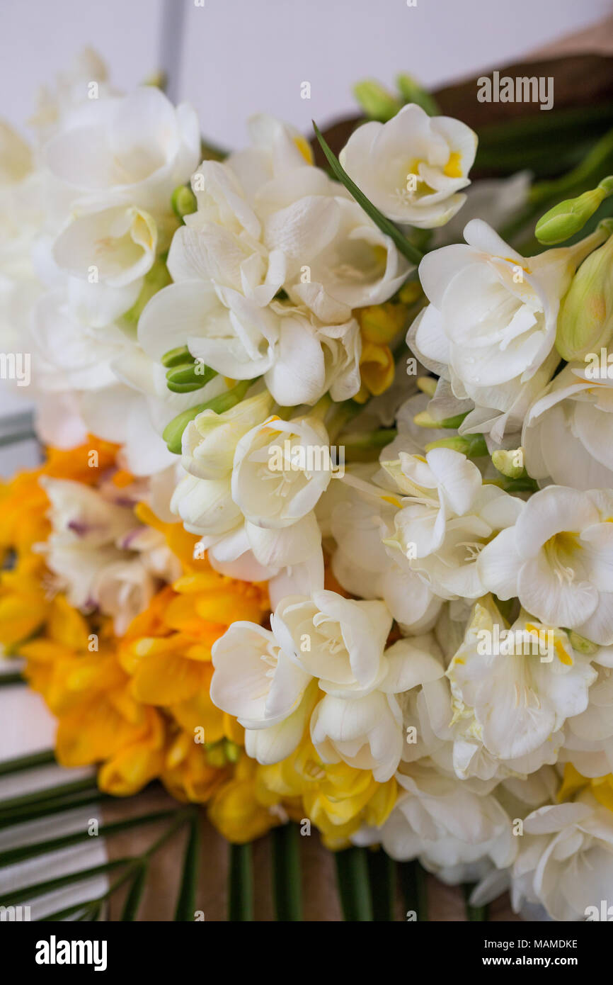 A bouquet of white freesia flower vertrical shot stock photo a bouquet of white freesia flower vertrical shot izmirmasajfo