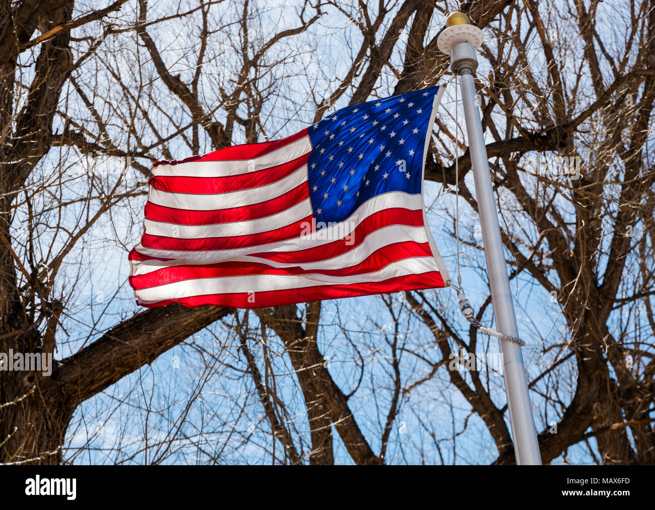 Patriotic symbols stock photos patriotic symbols stock images alamy american flag flying against blue sky tree branches in riverside park salida colorado buycottarizona Choice Image