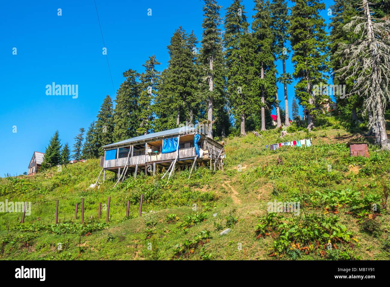 huts in bakhmaro village, one of the most beautiful mountain resorts