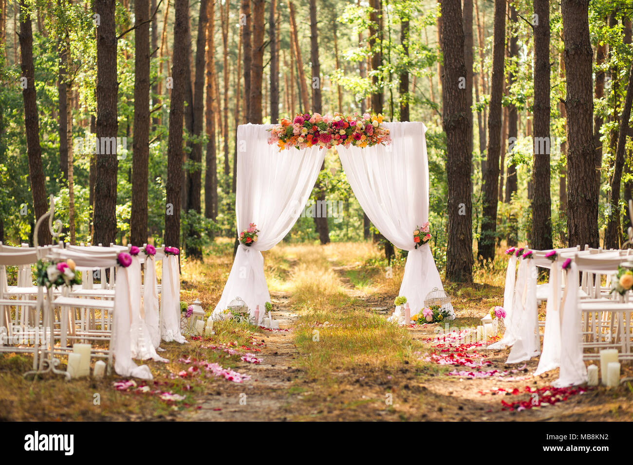 Beautiful elegant wedding decorations of place for ceremony outside beautiful elegant wedding decorations of place for ceremony outside in old wood with huge pines trees horizontal color picture junglespirit Choice Image