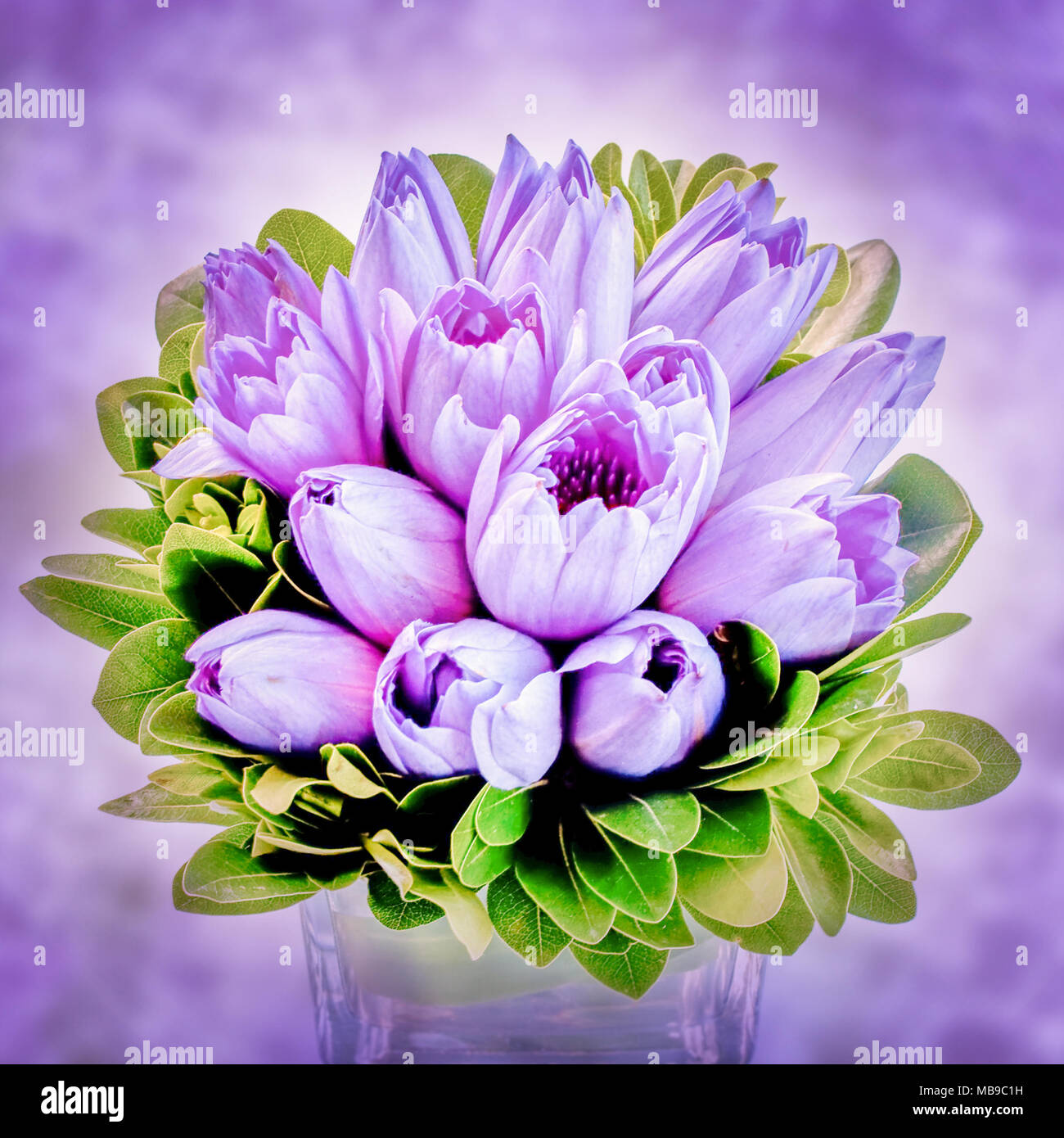 Purple Lotus Flower Bouquet In A Vase View From Above Stock Photo