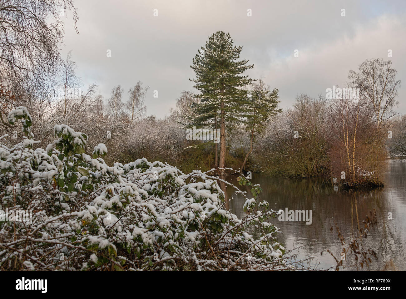 Frogmore Stock Photos Frogmore Stock Images Alamy