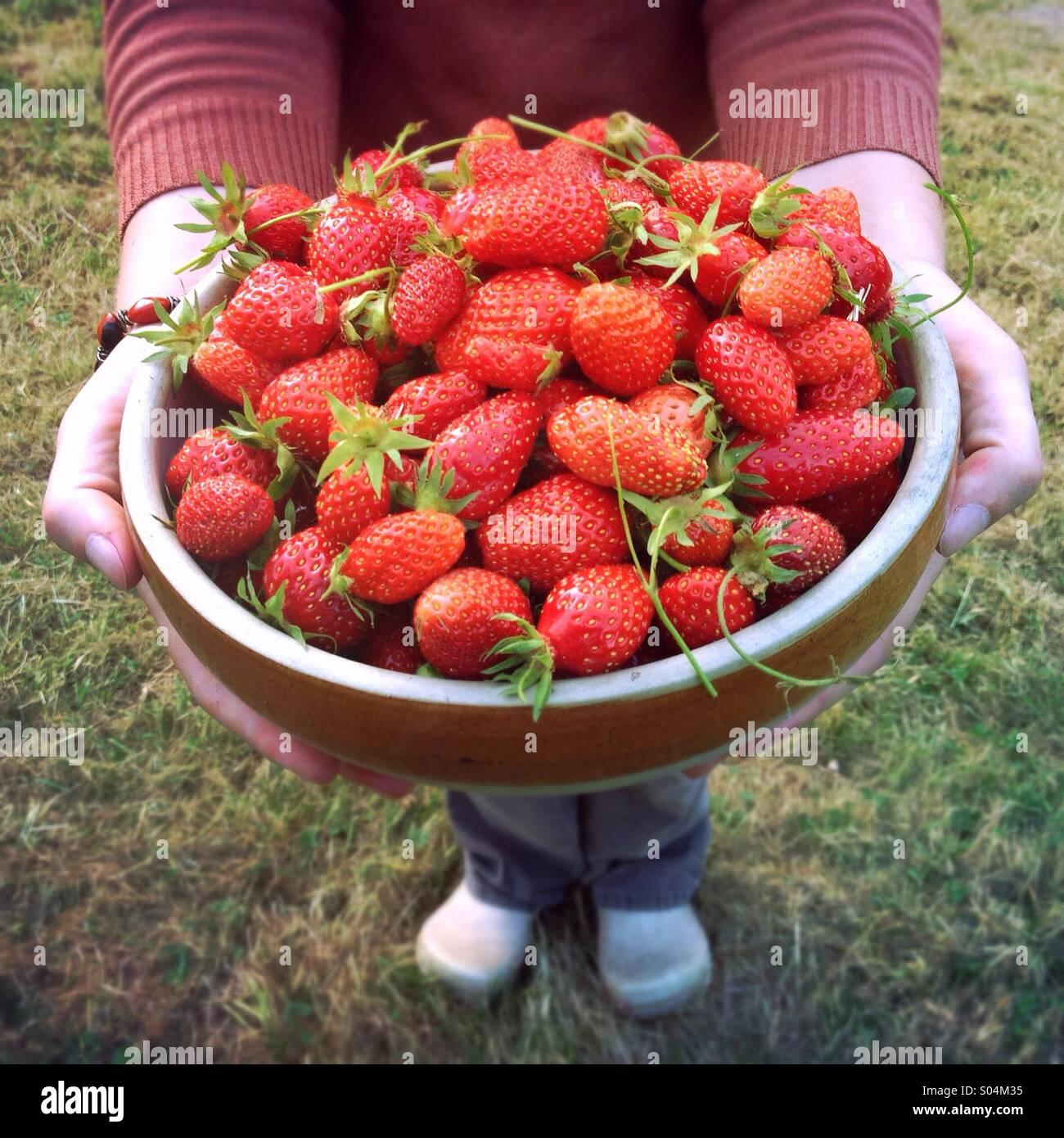 woman-holding-large-bowl-of-freshly-pick