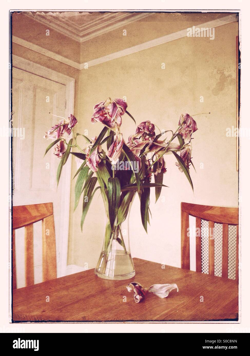 A flower vase of dead lilies sitting on a wooden table a flower vase of dead lilies sitting on a wooden table surrounded by two chairs inside a dining room a vintage effect photograph reviewsmspy