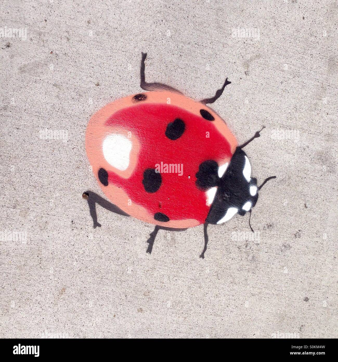 lady bird lady bug street art stencil art stock photo royalty