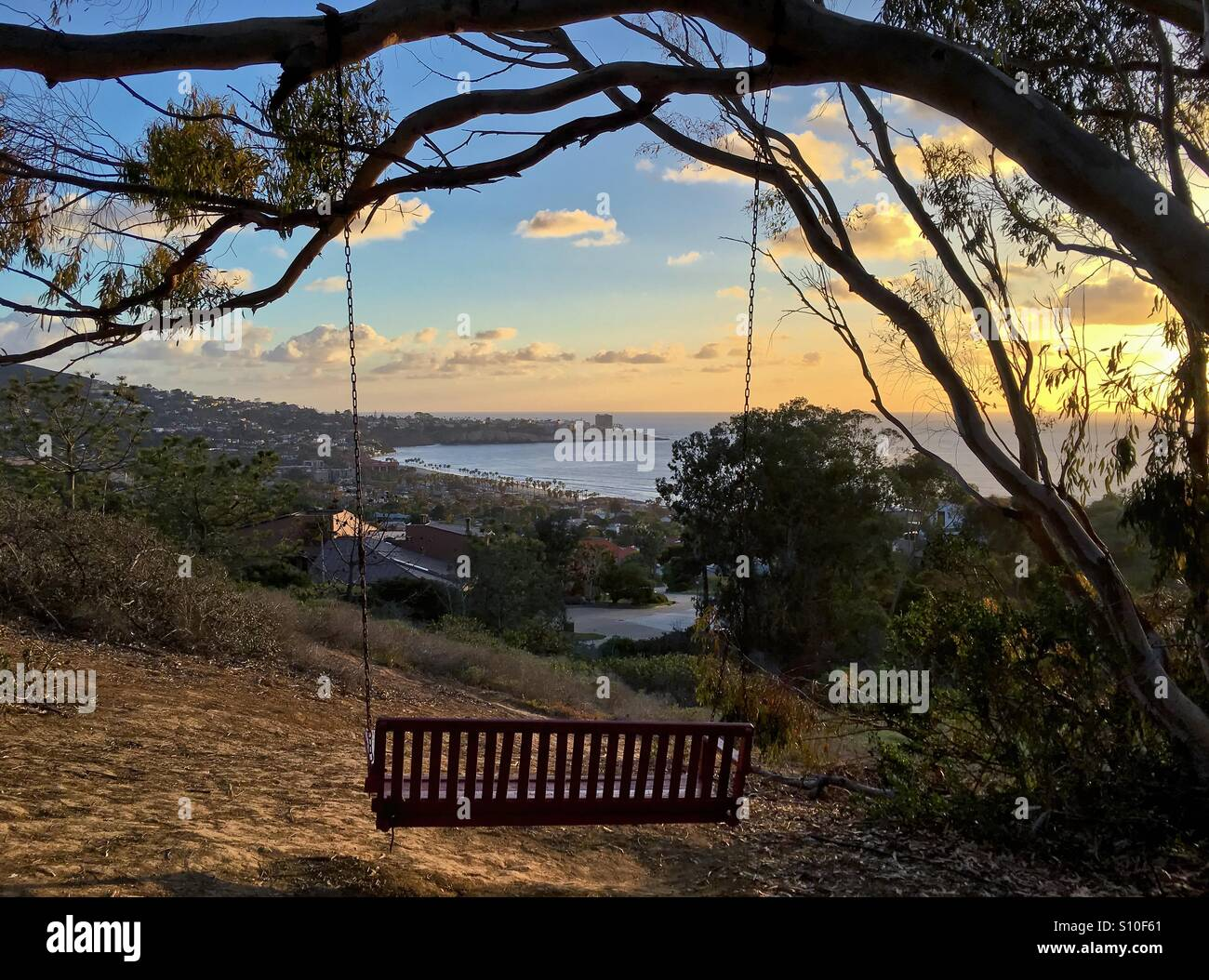 Empty Rustic Wooden Bench Swing Hanging On A Tree With A