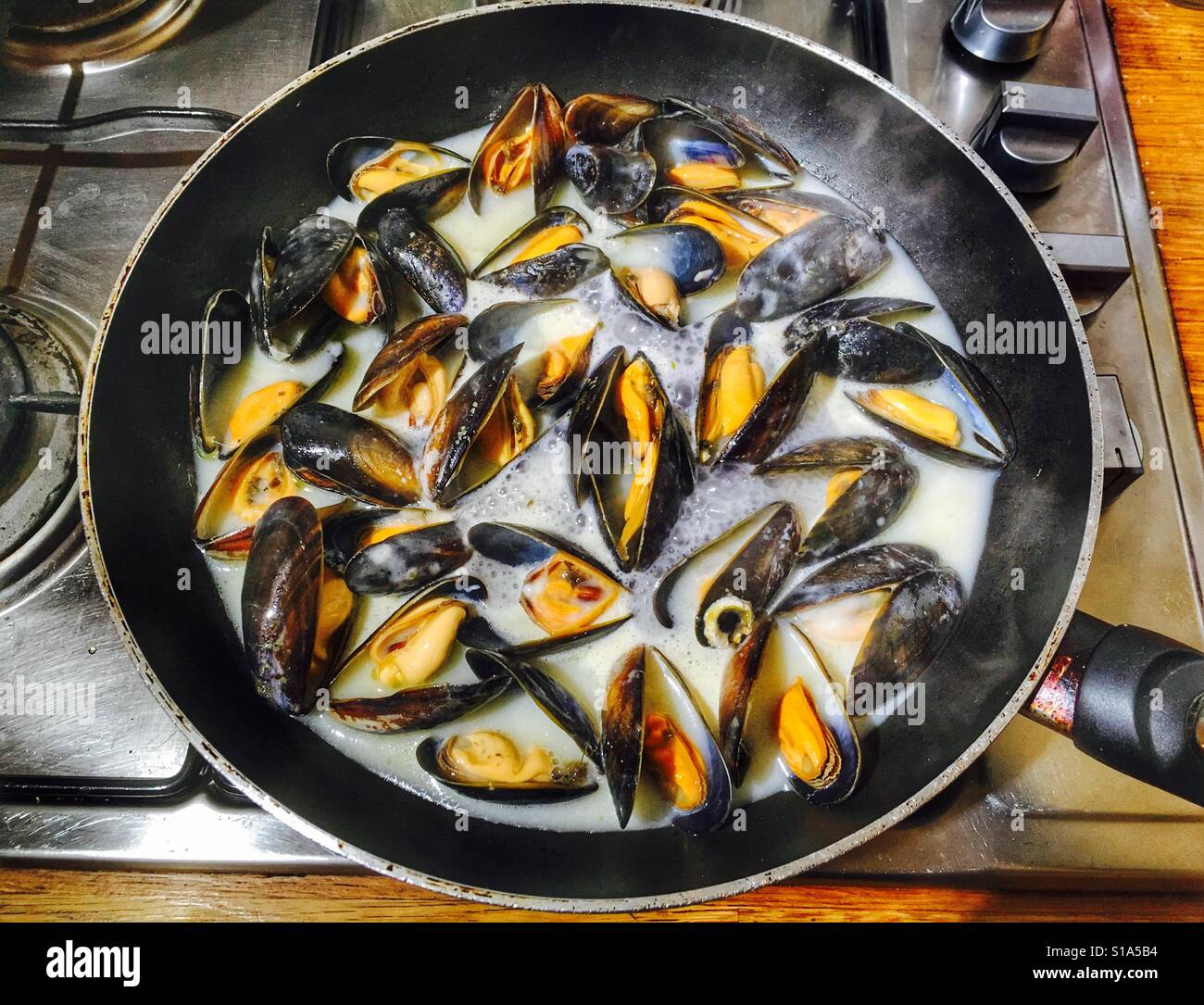 how to cook mussels in white wine and cream