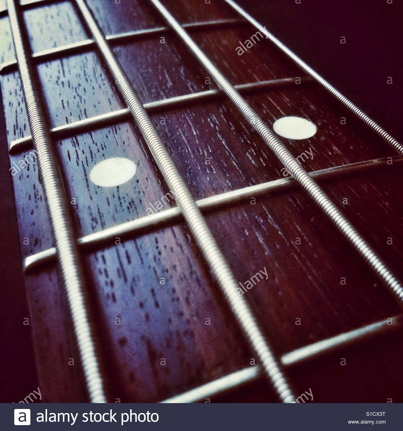 bass guitar closeup of rosewood fretboard on neck and strings stock photo royalty free image. Black Bedroom Furniture Sets. Home Design Ideas