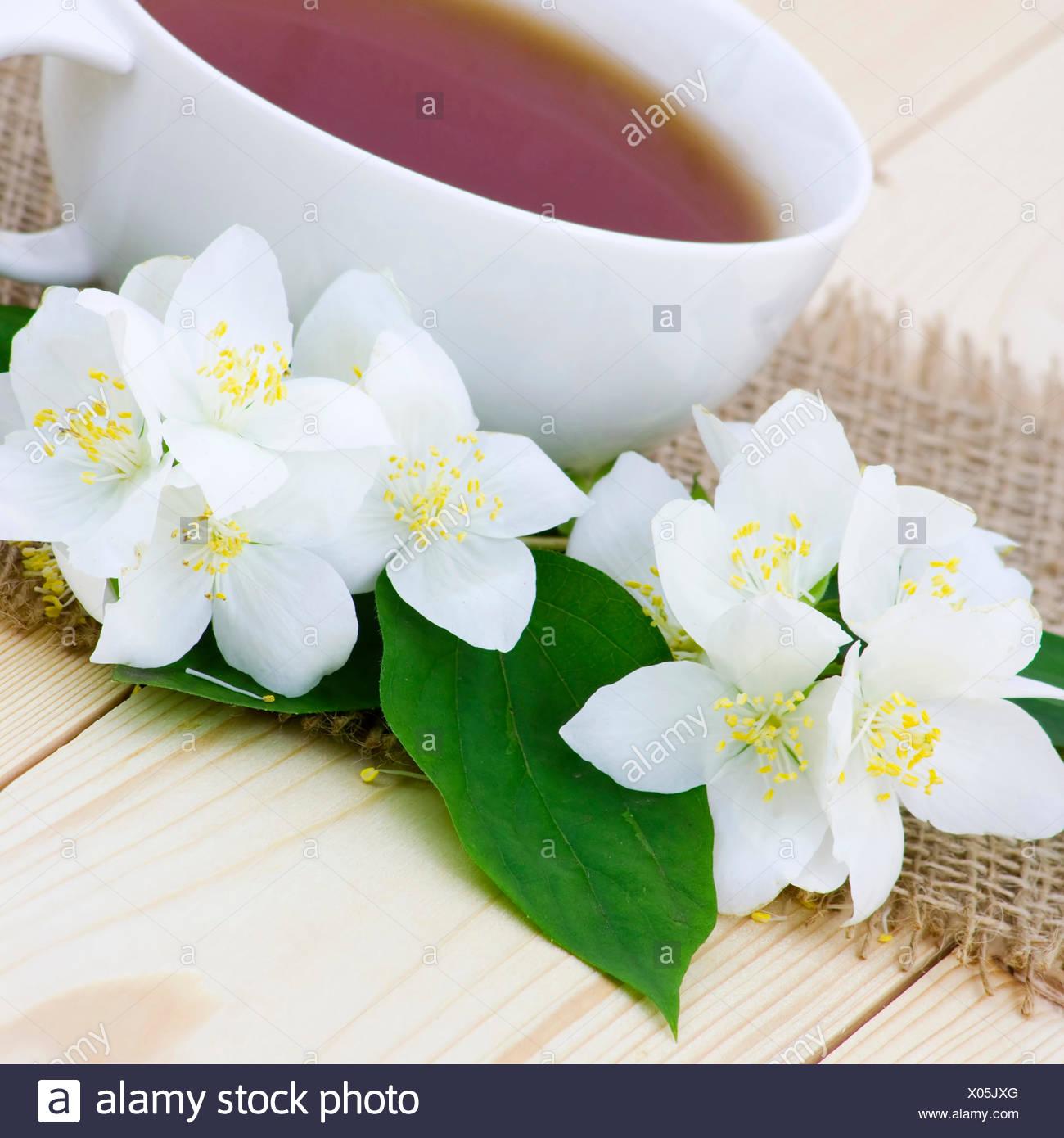 Cup Of Jasmine Tea And Jasmine Flowers Stock Photo 275490504 Alamy