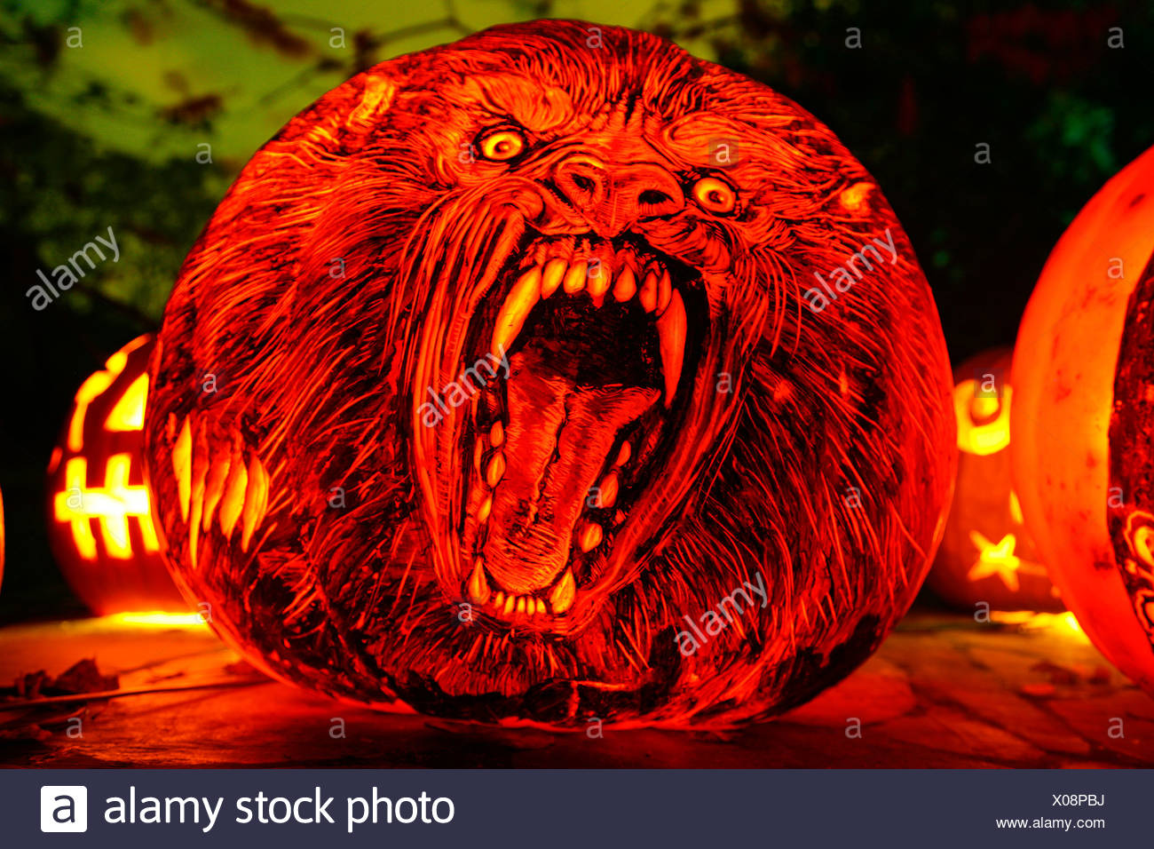 close-up of a jack o' lantern with the face of werewolf, roger