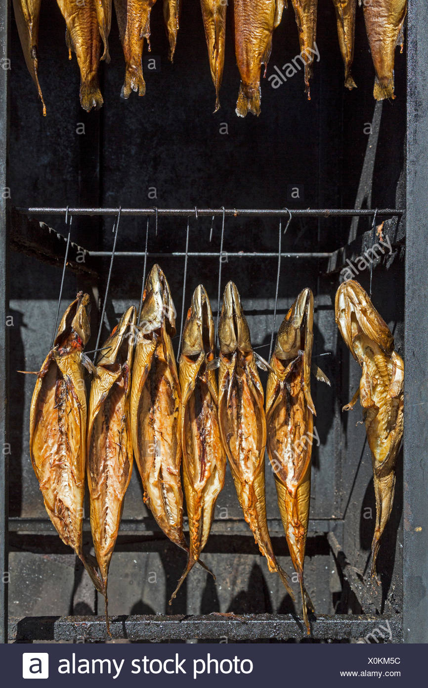 How to smoke fish in smokehouse What can smoke fish 77