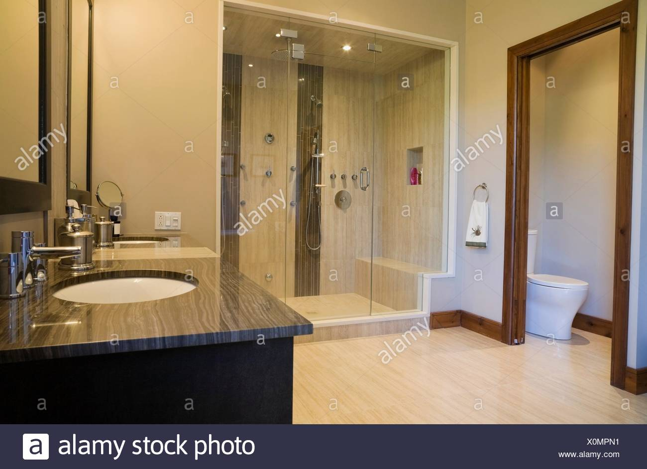 Main bathroom with double steam glass shower stall, vanity and ...