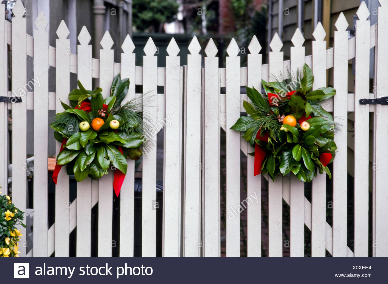 christmas decorations of greenery wreaths decorate on white picket fence gate portsmouth virginia usa - Christmas Fence Decorations