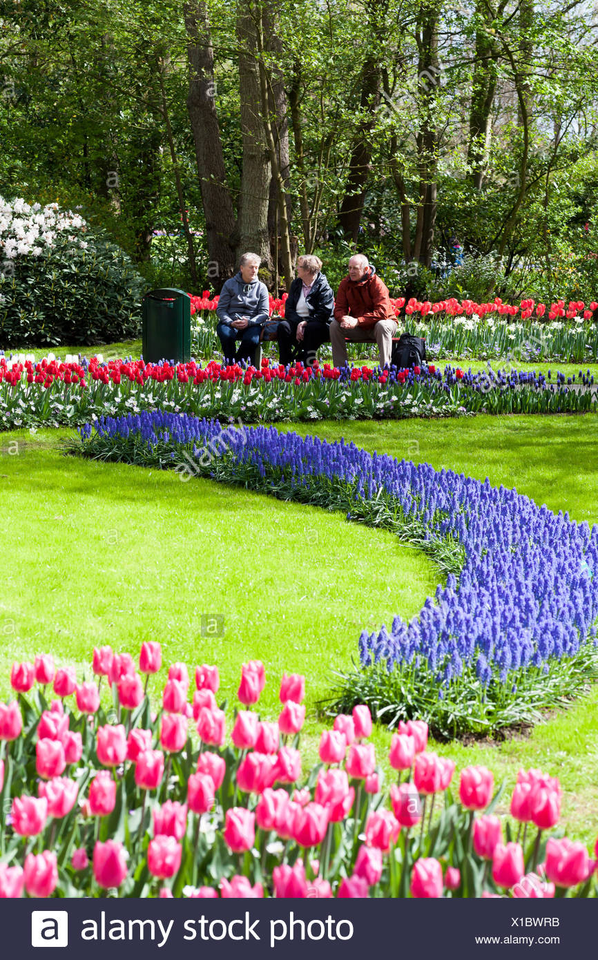 Visitors Admire The Beautiful Flowers And Gardens At The Keukenhof