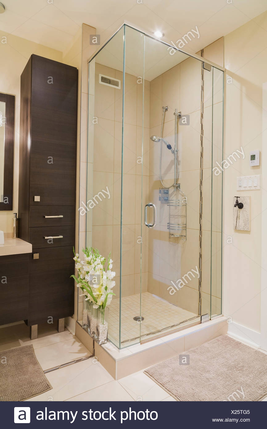 Contemporary Brown Laminated Wood Vanity And Shower Stall In Bathroom Of  Renovated Apartment In Old Cottage Style Home