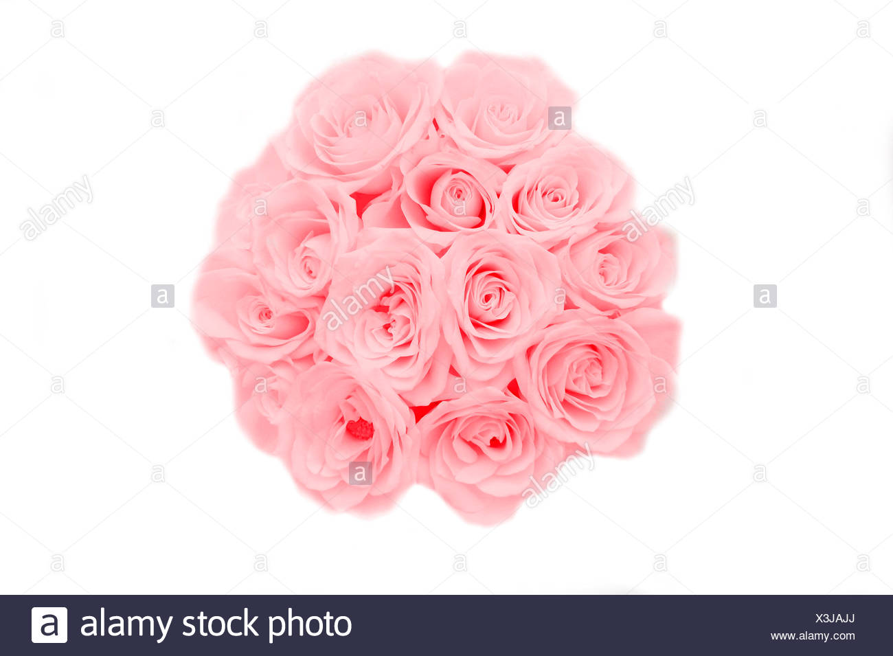 Pink Bunch Of Roses Stock Photo 277613354 Alamy