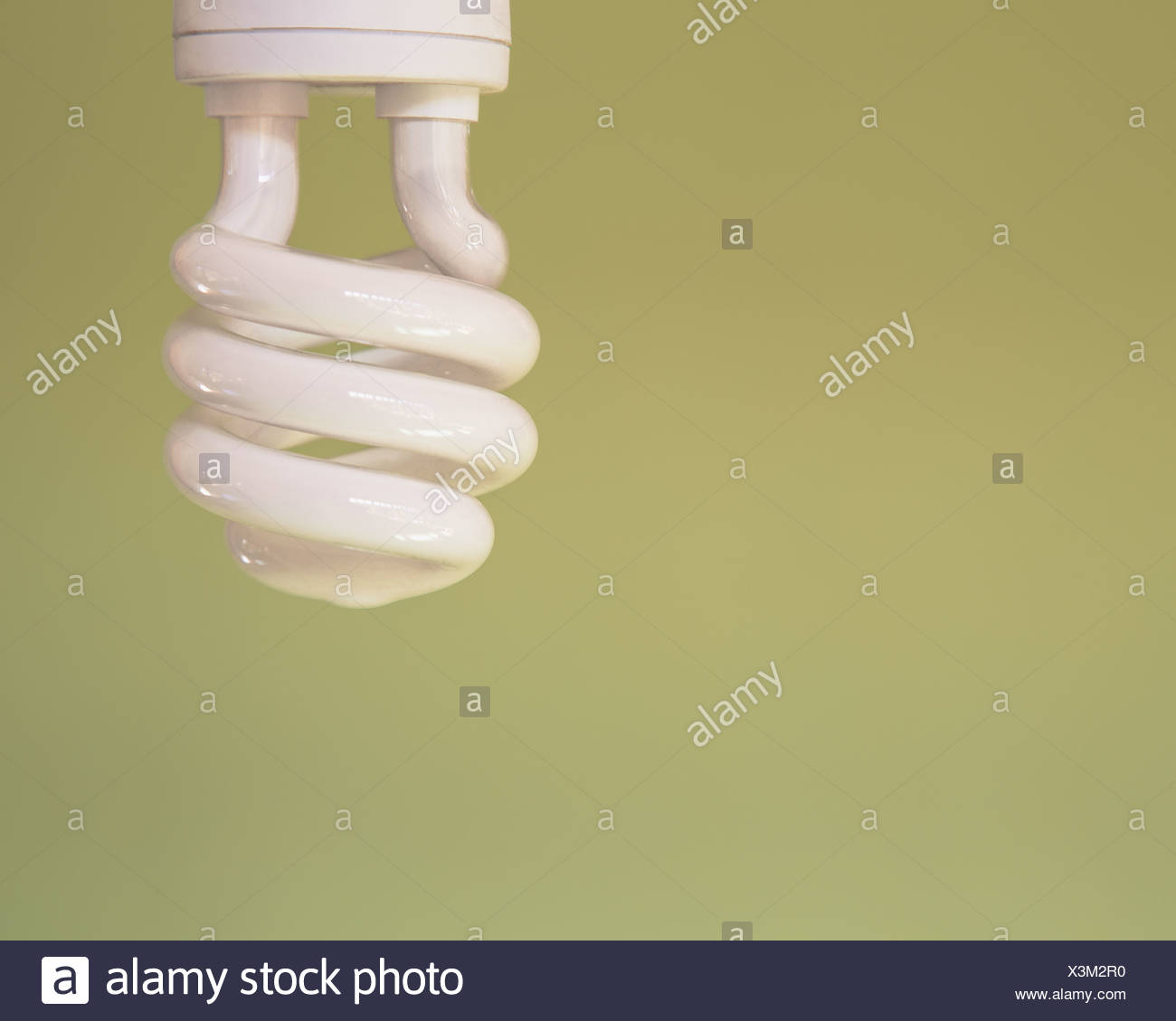 energy efficient fluorescent light bulb CFL Stock Photo: 277651108 ...