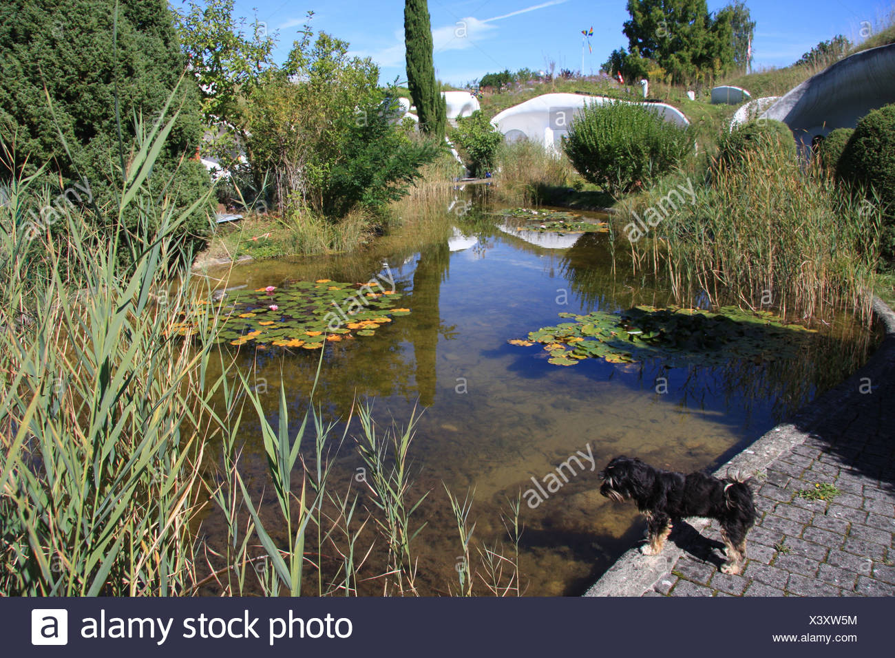 What is a biotope in ecology