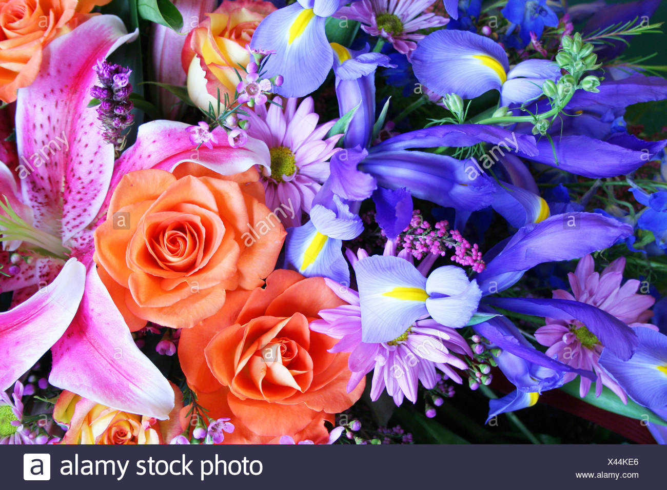 Blue Arrangement Beautiful Beauteously Nice Green Romantic Flower