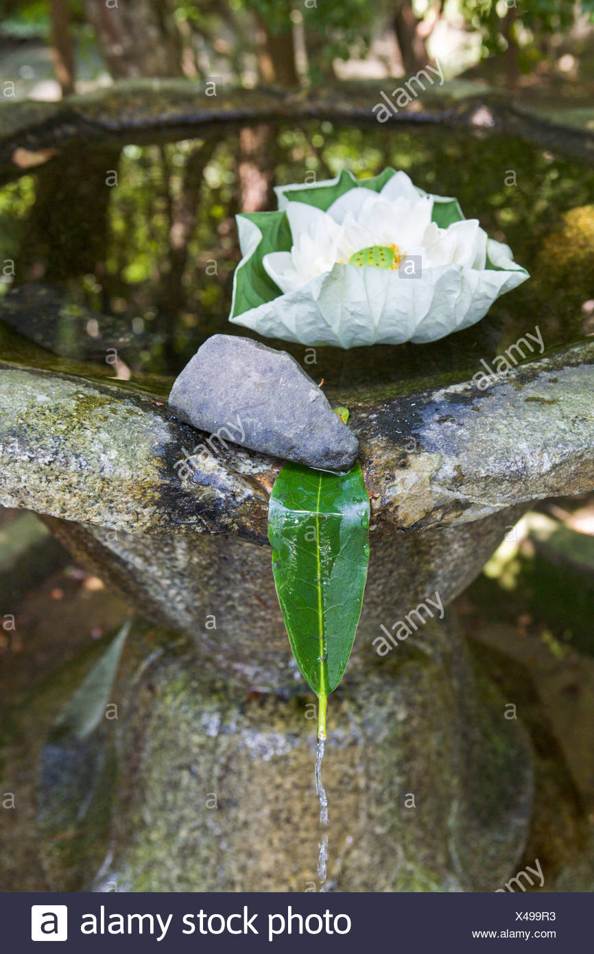 Fountain with lotus flower and leaf in a monastery garden kyoto fountain with lotus flower and leaf in a monastery garden kyoto japan asia izmirmasajfo