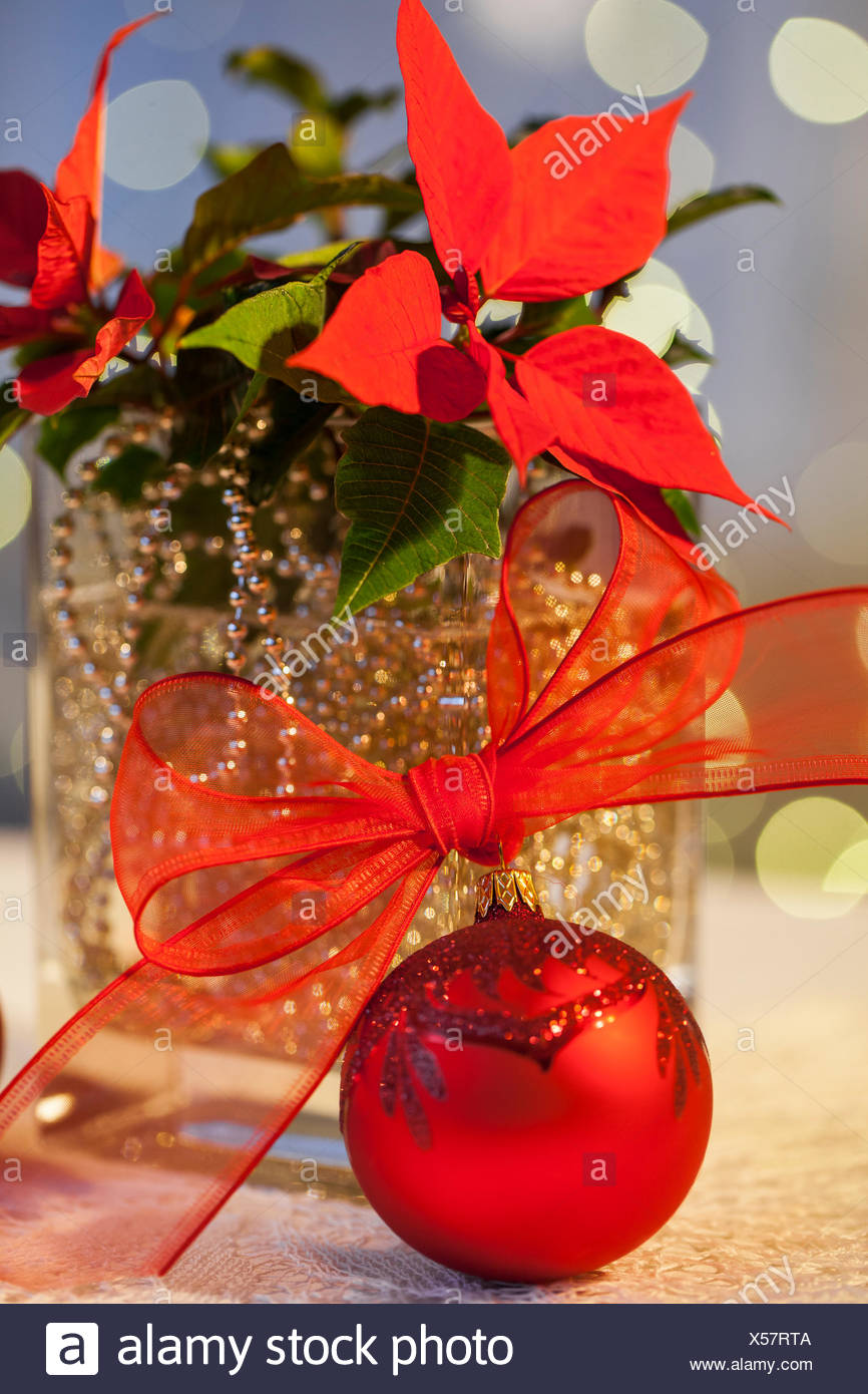 procedure golden ball chain put in a glass vase with water and add flower poinsettia on christmas decoration organza - How To Decorate Glass Vases For Christmas
