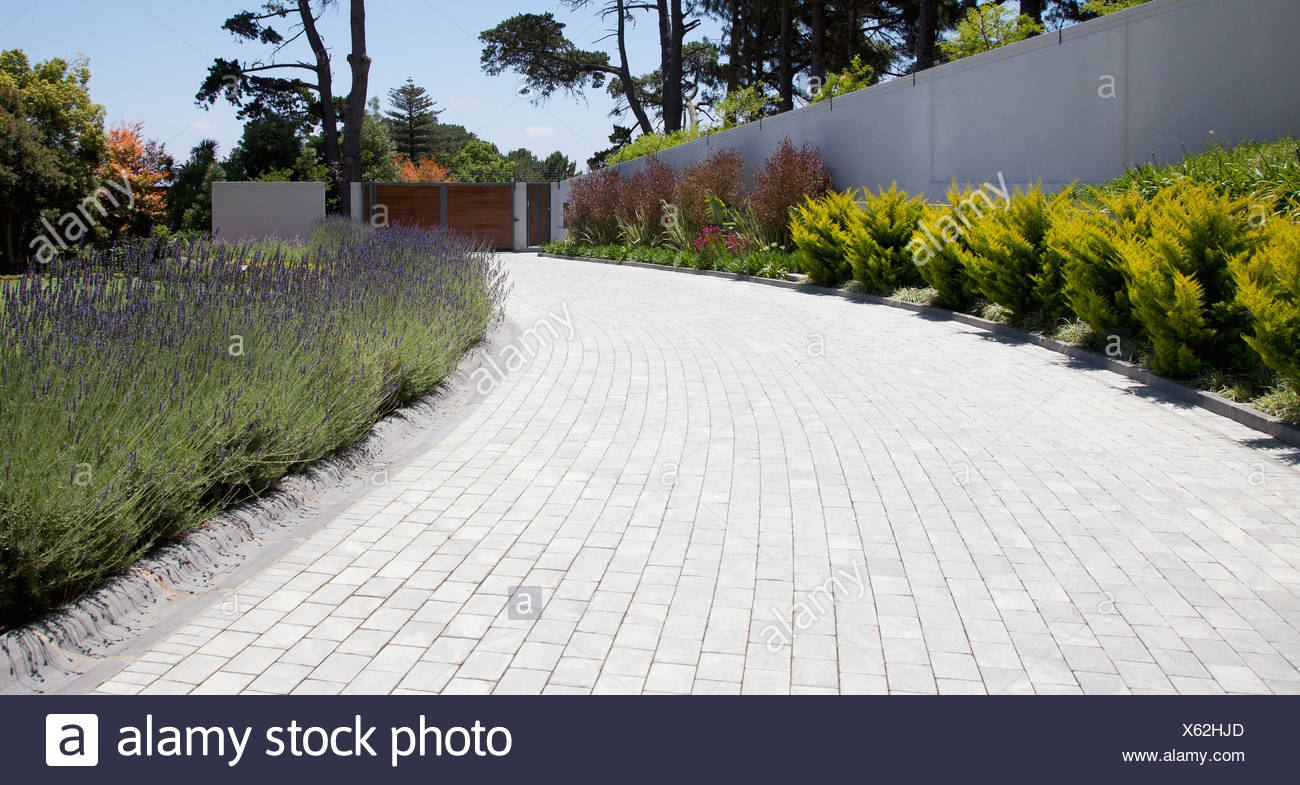 plants along cobblestone driveway stock photo 279111573 alamy