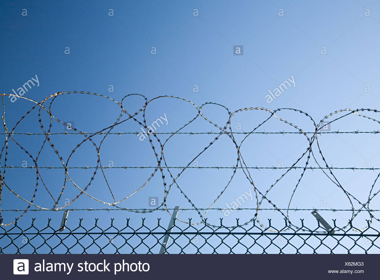 Barbed and razor wire on a fence Stock Photo: 279113859 - Alamy