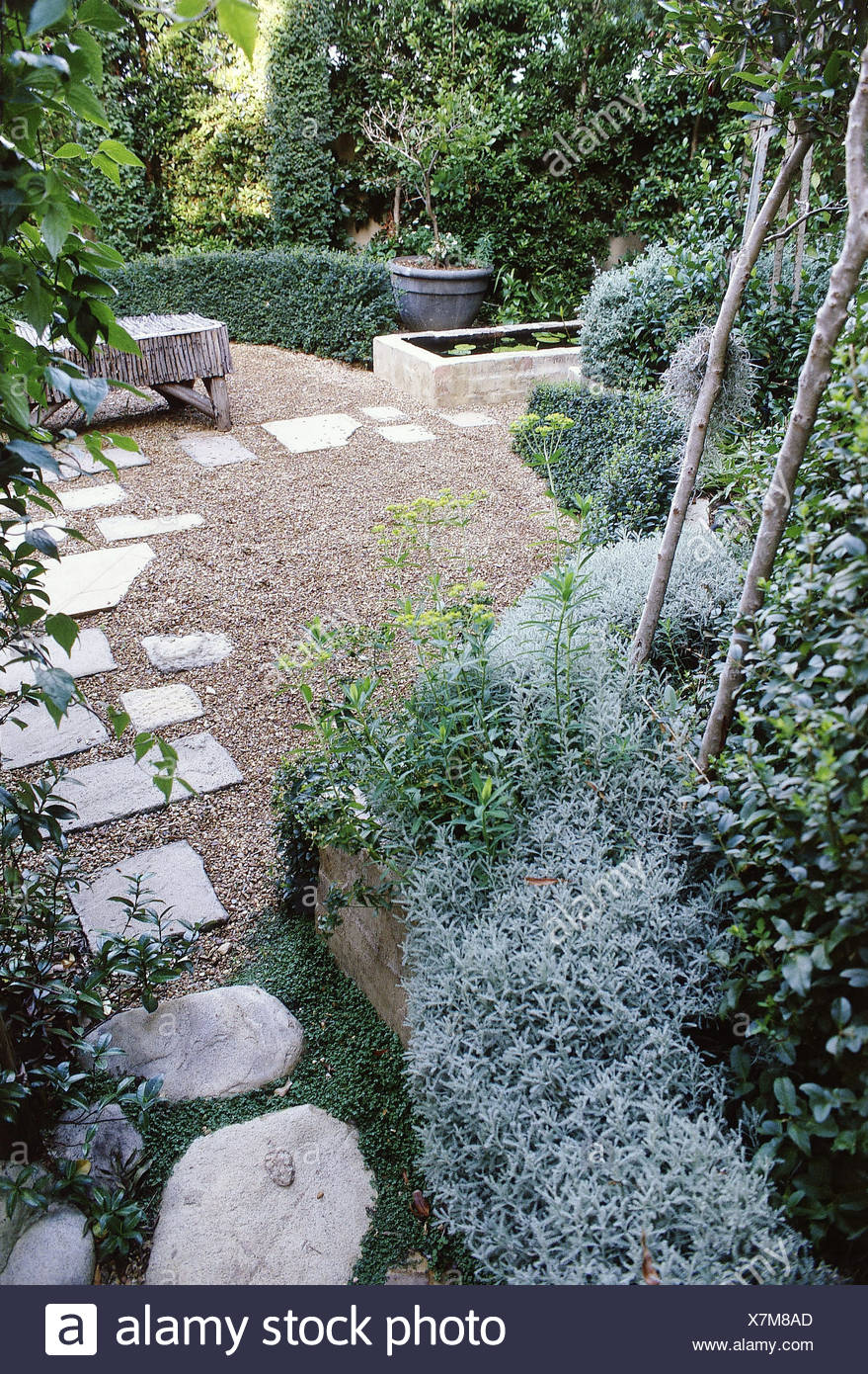 Small Gardens Garden Shaped Hedges, Small Trees, Green Bushes And Plants In  Raised Flowerbed Round Edge Of Gravel Area Paving