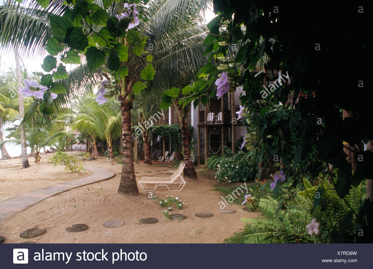 Loungers Beneath Palm Tree On Sand Patio In Front Of Colonial Style Coastal  House In The West Indies