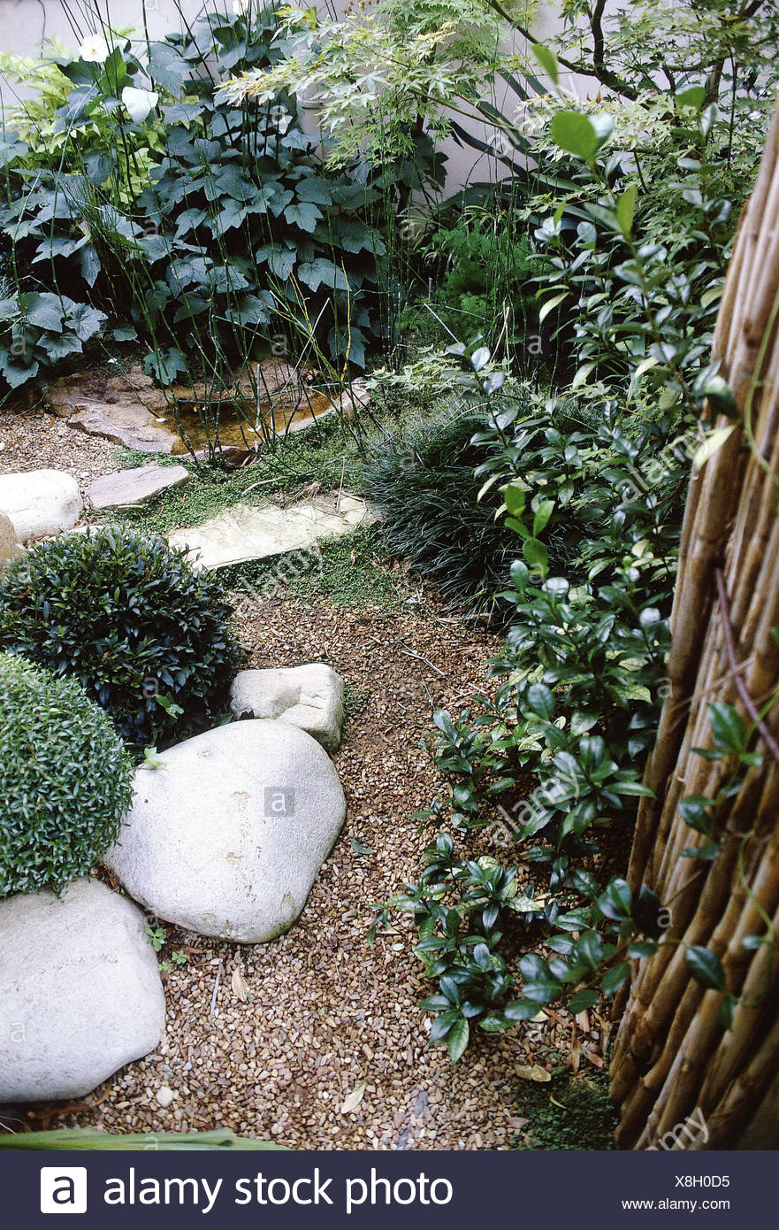 Small Gardens Garden Gravel Path, Two Round Shaped Bushes And White Rocks,  Small Pond, Green Plants Against White Wall And