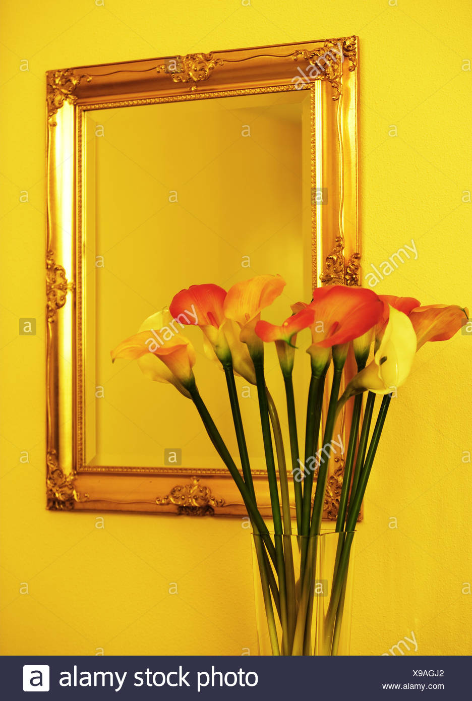 Wall-mirrors vase flowers Zantedeschien wall mirrors hall-mirrors ...
