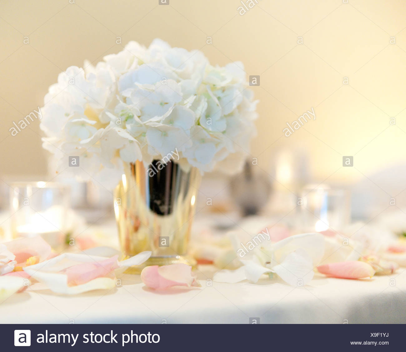 A bunch of white flowers in a silver vase surrounded by rose petals a bunch of white flowers in a silver vase surrounded by rose petals mightylinksfo