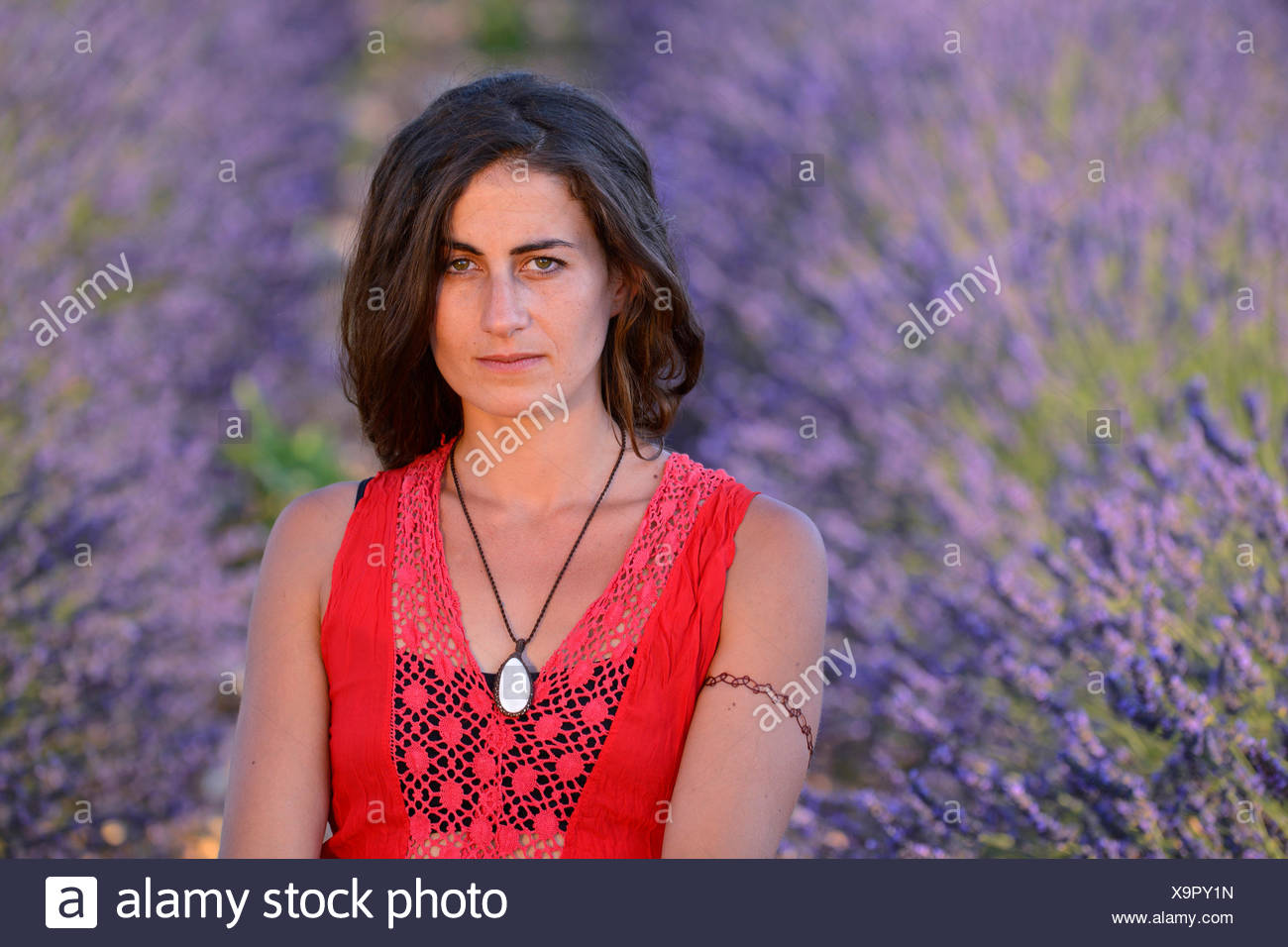 Europe France Provence Vaucluse Lavender Field Woman Red Dress Bloom Blooming Nature Girl French Brunette Flowers Flowering