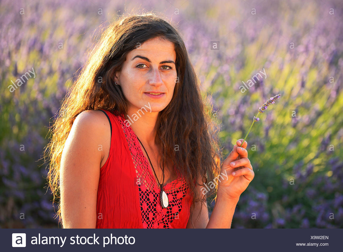 Europe France Provence Vaucluse Lavender Field Woman Walk Red Dress Bloom Blooming Nature Girl Walking French Brunette Hat