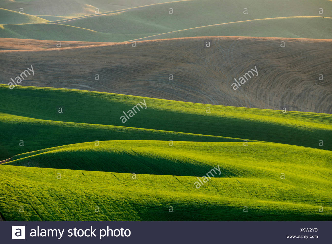 Loess soil stock photos loess soil stock images alamy for What is rich soil called