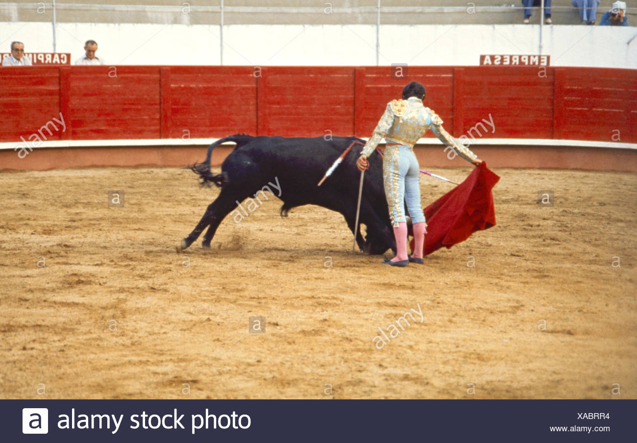 size 40 5aa43 35276 Fotos de toros de corralejas