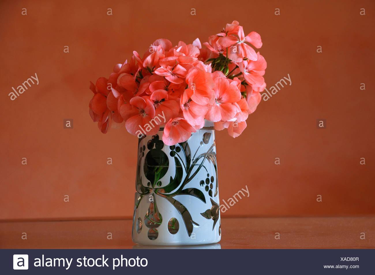 Hortensia flowers (Hydrangea) in an ornate antique beer mug Stock ...