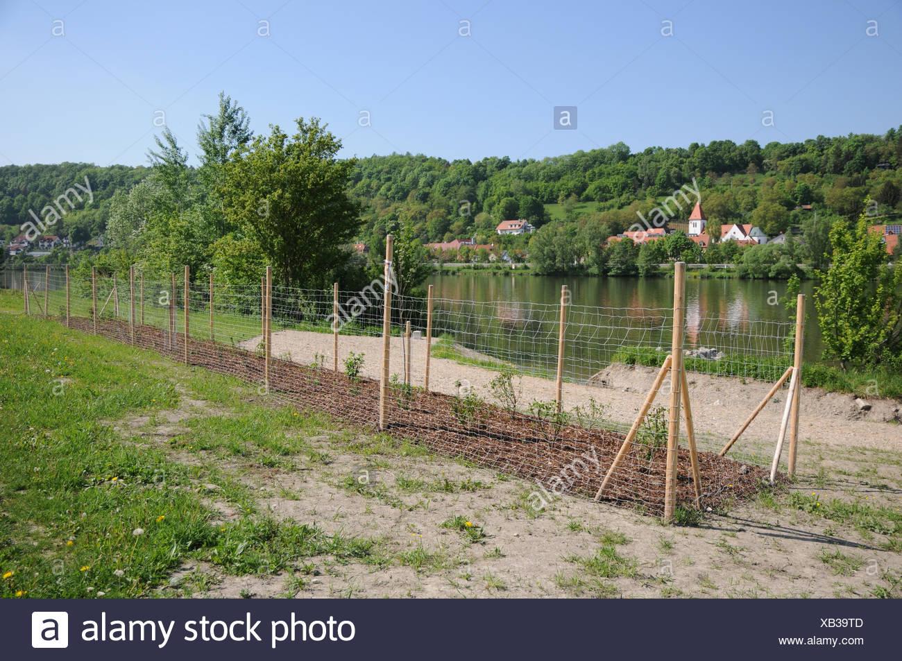 Faszinierend Super Zaun Ideen Von Danube River-bank With Gravel