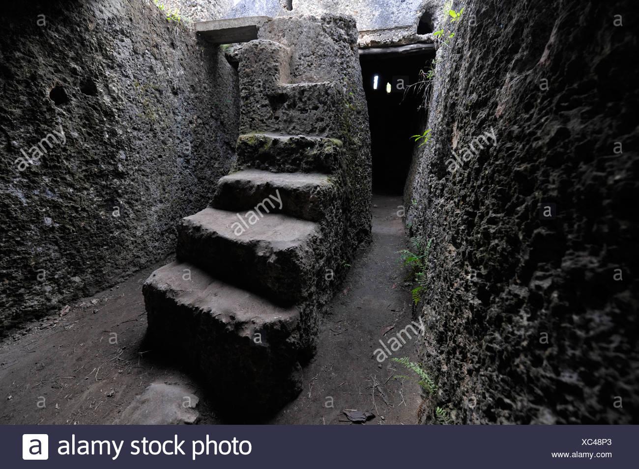 Africa Tanzania Tanzania Zanzibar East Coast Mangapwani Slave Caves Slavery  Stair