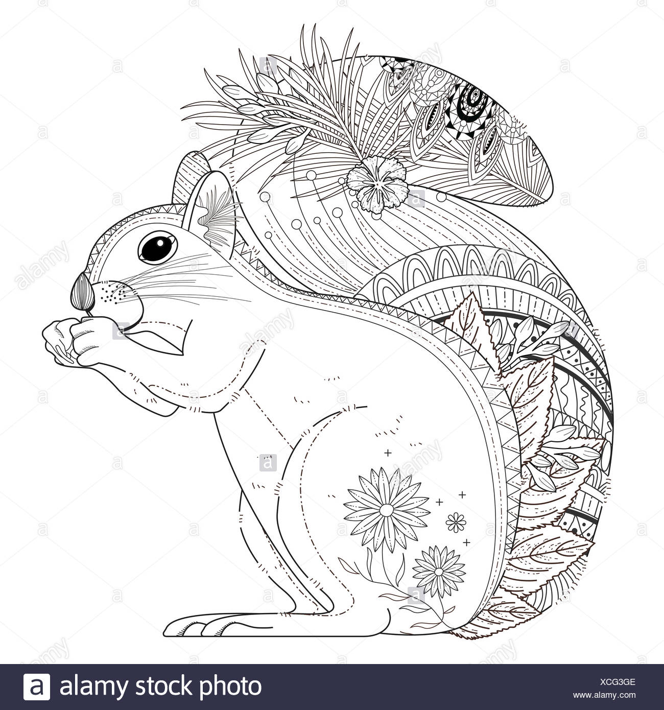 adorable squirrel coloring page in exquisite line Stock Photo ...