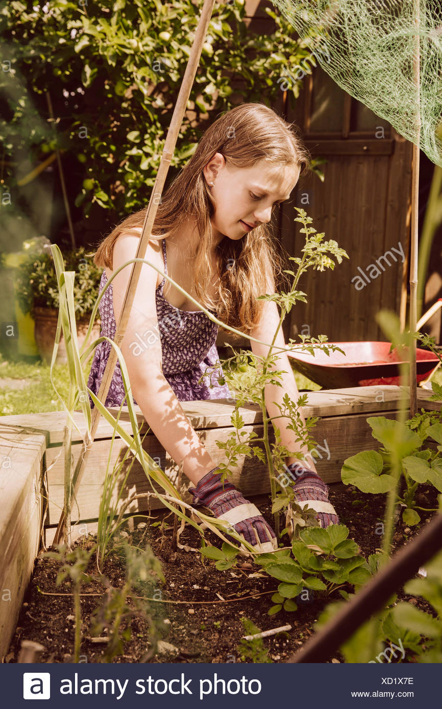 Girl working in her vegetable garden Stock Photo: 283398962 - Alamy